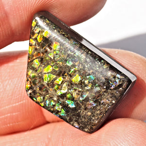 Rare Purple & Blue Flashes Alberta Ammolite Cabochon Ideal for Crafting #1 - Earth Family Crystals