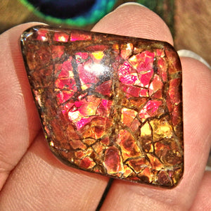 Moving Blood Red Sparkle Alberta Ammolite Cabochon Ideal for Crafting