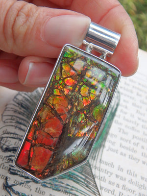 Large Alberta Ammolite Ancient Dancing Colors Pendant in Sterling Silver (Includes Silver Chain) - Earth Family Crystals