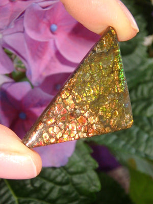 Lovely Rainbow Flash Alberta Ammolite Cabochon (Ideal For Wire Wrapping) - Earth Family Crystals