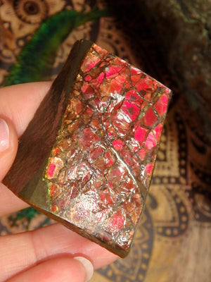 Hand Held Fire Red Alberta Ammolite Specimen - Earth Family Crystals