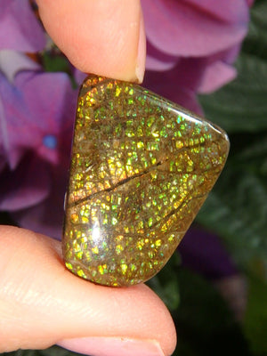 Twinkling Gold Orange & Green Alberta Ammolite Cabochon (Ideal For Wire Wrapping) - Earth Family Crystals