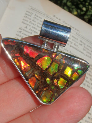 Mesmerizing Multi Flashes  Alberta Ammolite Pendant in Sterling Silver (Includes Silver Chain) - Earth Family Crystals