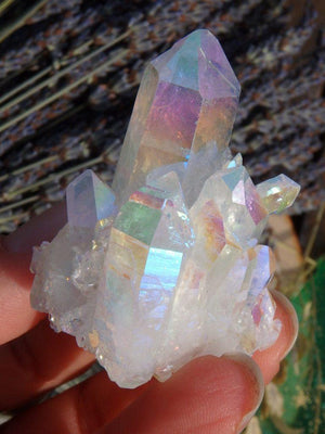 Angel Aura Quartz Cluster 3 - Earth Family Crystals