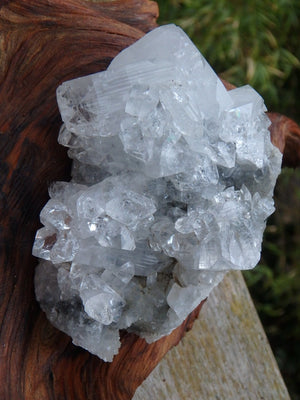 High Shine White Apophyllite Cluster From India - Earth Family Crystals