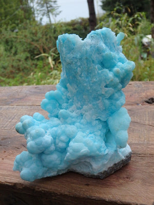 Amazing Large Vibrant Blue Aragonite Natural Standing Specimen - Earth Family Crystals