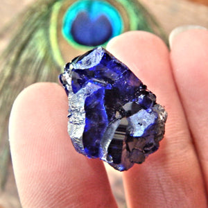Deep Cobalt Blue Crystallized Azurite Dainty Collectors Specimen From Mexico