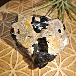 Natural Black Tourmaline Blades Nestled in Feldspar Matrix From Brazil