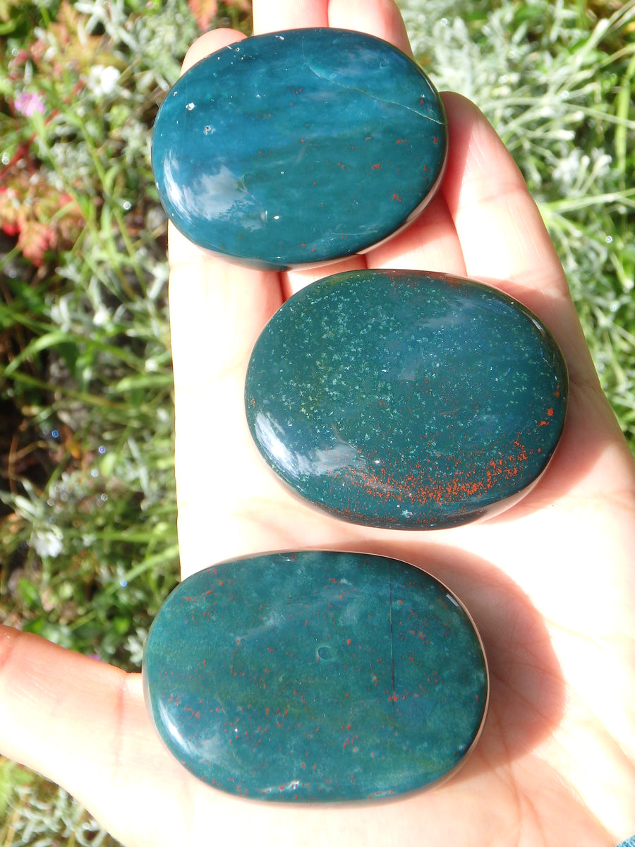 Shiny Bloodstone Polished Worry Stone (1)