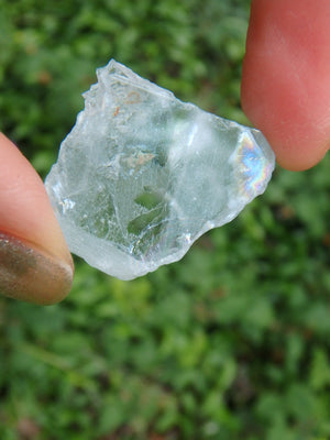 Rainbow Loaded Natural Baby Blue Topaz In Collectors Box