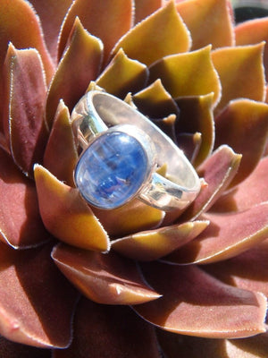 Adorable Gemmy Blue Kyanite Ring In Sterling Silver (Size 7) - Earth Family Crystals