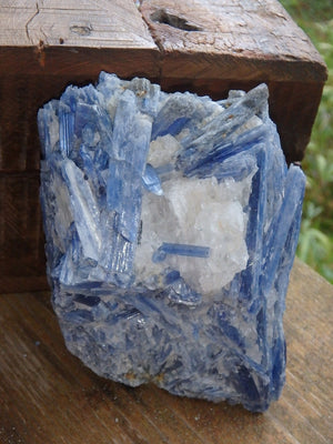 Gorgeous Large Blades of Blue Kyanite Cluster With Quartz Inclusions - Earth Family Crystals