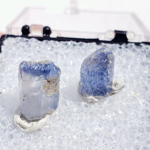 Set of 2 Rare Dumortierite & Quartz Mini Points From Brazil in Collectors Box #1