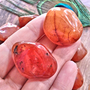 Set of 2 ~ Chunky Carnelian Polished Pocket Tumbled Stones~ Perfect for Sacral Chakra Support