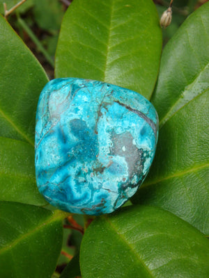 Beautiful Robin Egg Blue Chrysocolla Palm Stone From Peru