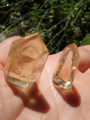 Set of 2~Gorgeous Natural Citrine Mini Polished Standing Generators