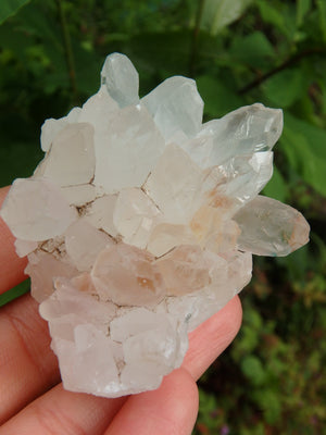 Clear Quartz Cluster From India