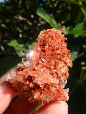 Shimmering Druzy Natural Creedite Cluster from Mexico