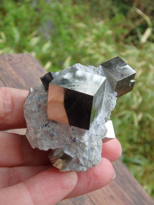 Amazing Natural Multi Cubic Pyrites Nestled in Matrix - Earth Family Crystals