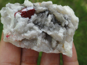 CINNABAR With Record Keepers on Quartz Matrix~ Stone of Manifestation, Wealth Creation,Awakening Mystic Vision* - Earth Family Crystals