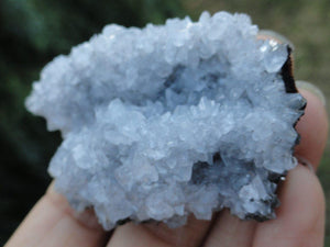 Rare Blue Barite Specimen - Earth Family Crystals