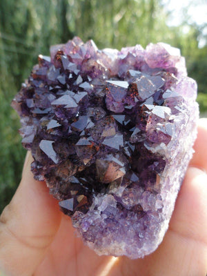 Thunder Bay AMETHYST CLUSTER With Red Hematite Inclusions - Earth Family Crystals