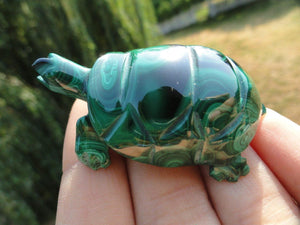 Malachite Turtle carving - Earth Family Crystals