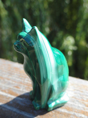 Malachite cat Carving - Earth Family Crystals