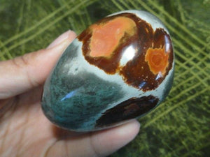 Large POLYCHROME JASPER PALM STONE* - Earth Family Crystals