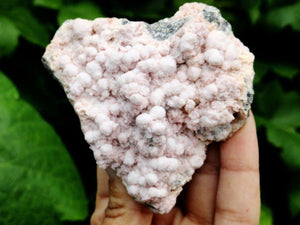 Natural Botryoidal PINK MANGANO CALCITE COLLECTORS SPECIMEN - Earth Family Crystals