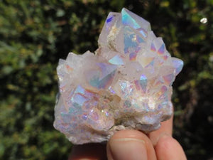 ANGEL AURA WHITE SPIRIT QUARTZ CLUSTER - Earth Family Crystals
