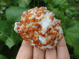SPESSARTINE GARNET CLUSTER - Earth Family Crystals