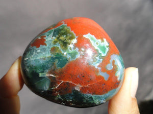 OCEAN JASPER SPECIMEN - Earth Family Crystals