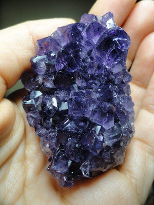 PURPLE AMETHYST CLUSTER - Earth Family Crystals