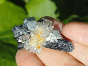 AQUAMARINE & BLUE FLUORITE On BLACK TOURMALINE Matrix - Earth Family Crystals