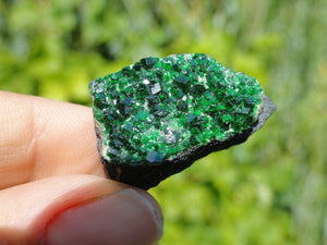 RARE ~ UVAROVITE GARNET SPECIMEN With Double Sided Green Crystal Druzy - Earth Family Crystals