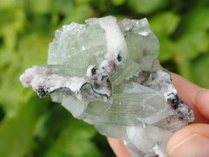 Gemmy GREEN APOPHYLLITE With PINK STILBITE Inclusions - Earth Family Crystals
