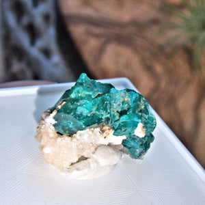 Healing Heart Raw Dioptase in Collectors Box