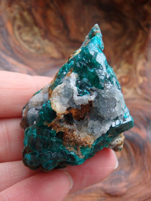 Gorgeous Deep Emerald Green Dioptase Specimen With Quartz Druzy Caves From Zaire - Earth Family Crystals