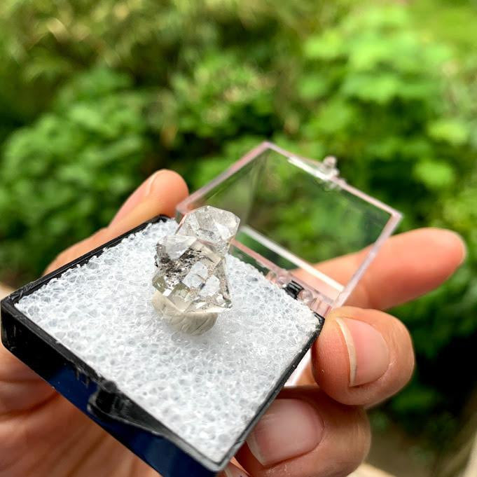 Brilliant Clarity New York Herkimer Diamond Quartz Specimen in Collectors Box #3
