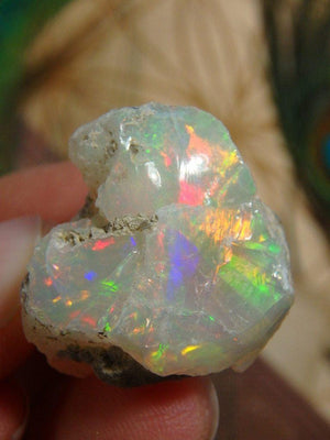 AA Grade Massive Flash! Fine Ethiopian Opal Collectors Specimen - Earth Family Crystals