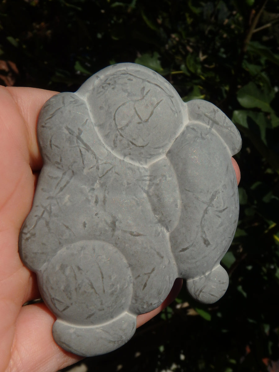 One of a Kind Quebec Fairy Stone Concretion Specimen 1
