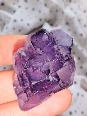 3D Contrast Midnight Purple Fluorite Cluster From Mexico - Earth Family Crystals