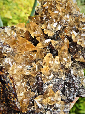XL Extremely Impressive Elmwood Mine DT Shiny Golden Calcite Points Nestled on Ruby Sphalerite Matrix