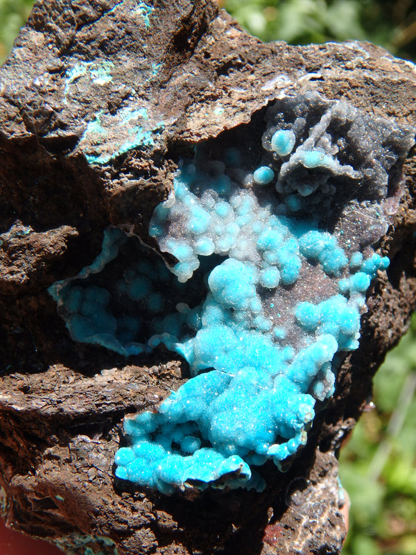 Pretty Blue Druzy on Matrix Hemimorphite Specimen