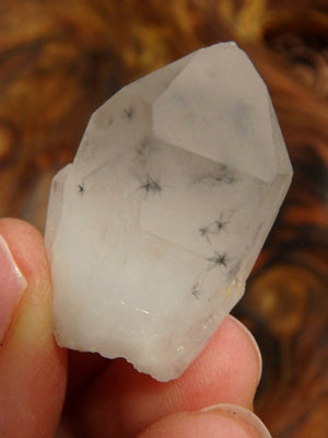RARE! Amazing Hollandite Star Quartz Point Collectors Specimen From Madagascar - Earth Family Crystals