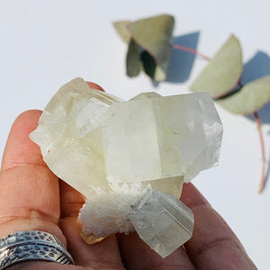 Gemmy Green & Clear Apophyllite Cluster from India #8