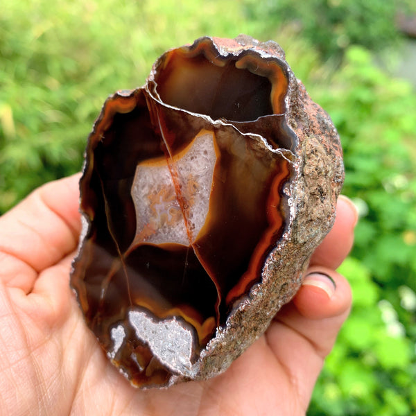 Earthy Patagonia Condor  Agate Partially Polished Specimen - Earth Family Crystals