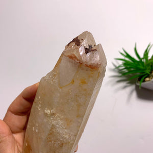 One of a Kind~Double Terminated Tangerine Lemurian Quartz Large Point Encrusted in Druzy From Brazil