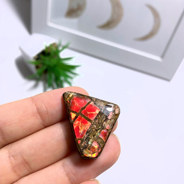 Ammolite Cabochon From Alberta ~Ideal for Crafting #2